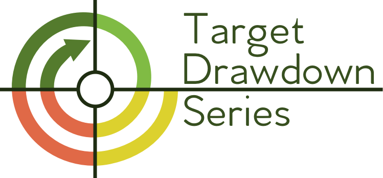 Target Drawdown Series